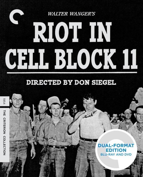 RiotCell11